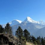 Himalayan Feast on the Annapurna Trail