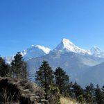 Himalayan Feast on the Annapurna Trail