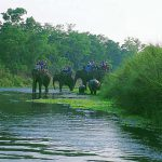 Conservation Drones introduced in Chitwan National Park