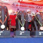 International Elephant Race – December 2007 in Chitwan National Park