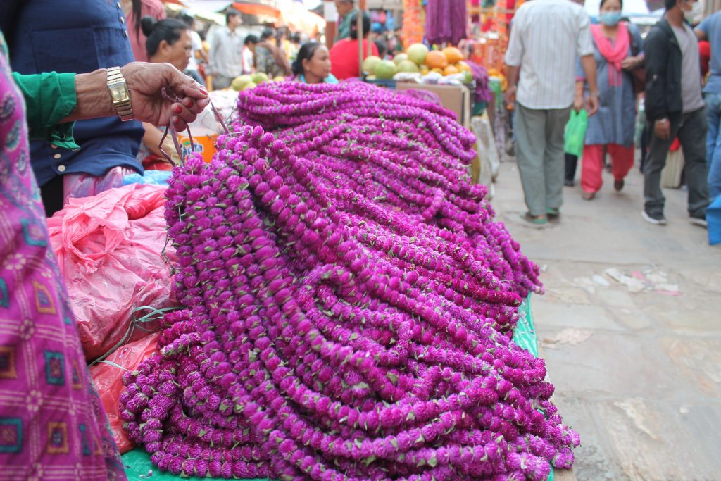 Globe amaranth garlands are offered to brothers by sisters on Bhai Tika