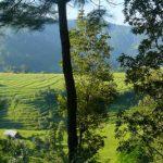 Nepal Kanchenjunga Photo Gallery