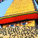 LUXURY TOUR- Kathmandu, Pokhara & Chitwan