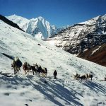 The Great Himalayan Trail & Other Products Launched
