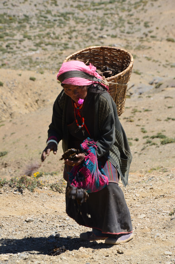 Flower for the special one dung for the fire - a woman in Dolpa