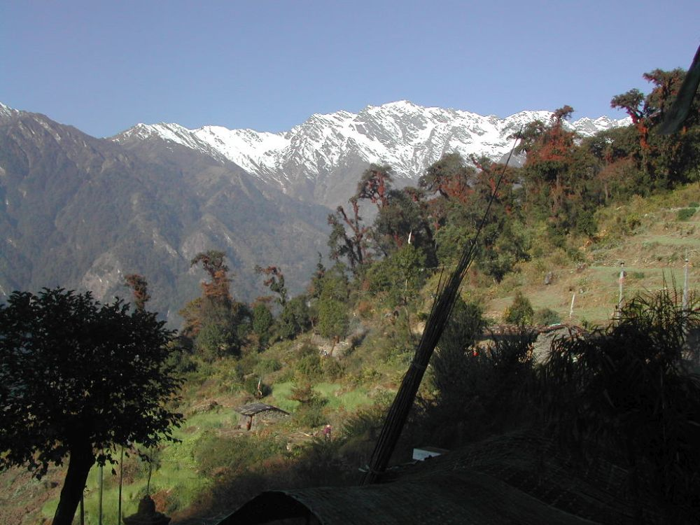 Blue skies are more beautiful at Langtang