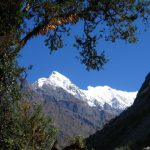 Langtang Trek: Easy and enjoyable.