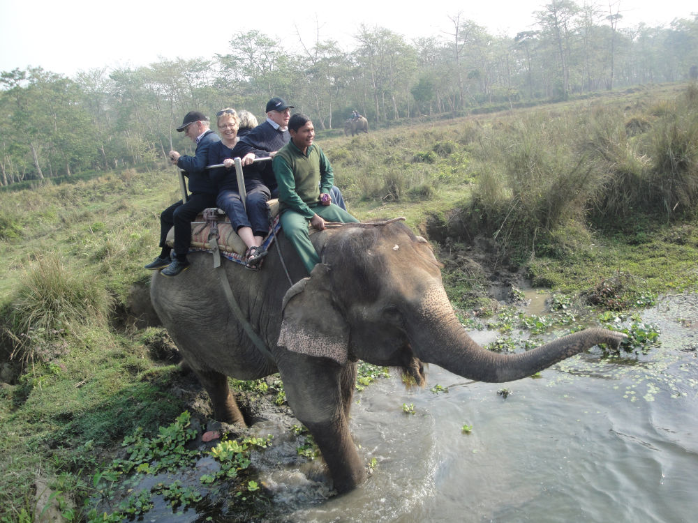 Visitors on a wildlife safari at Chitwan