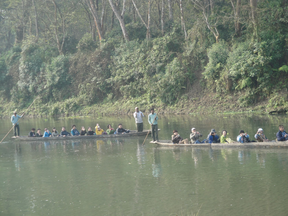 Canoeing at Rapti River- aquatic and bird life at its best