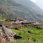 Trekking Around Manaslu